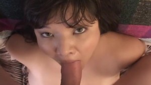 Chubby brunette bitch getting fucked doggy style