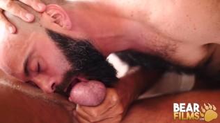 BEARFILMS Bald Cub Ale Tedesco Rides Daddys Hairy Cock