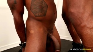 Muscle gay Horny brazillian shemale