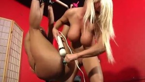 Babes In The Kink Zone- Maxine X