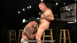 Backdoor Bear