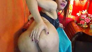 Hot Asian Shemale Jerks and Cums