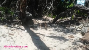 Thai teen heather goes atving in paradise and gets huge throatpie in quad