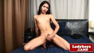 Smalltitted asian tranny wanking cock solo