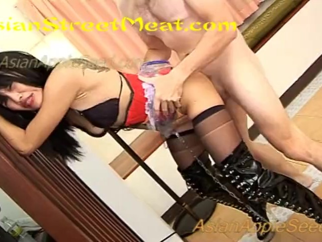See Thru Plastic Skirt and Glass Heels