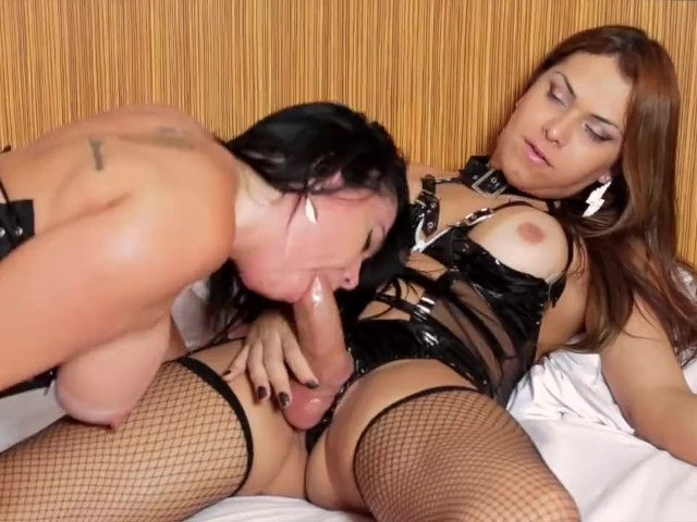 Best Shemale Blowjob Compilation - Free Porn Videos - Youporn-8633
