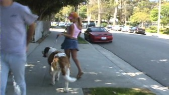 Dog walker is a hot flasher