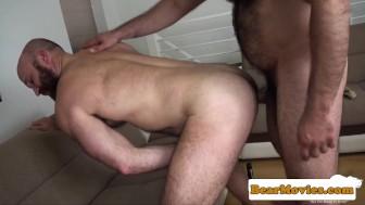Bearded chubby bear fucking mature guys ass